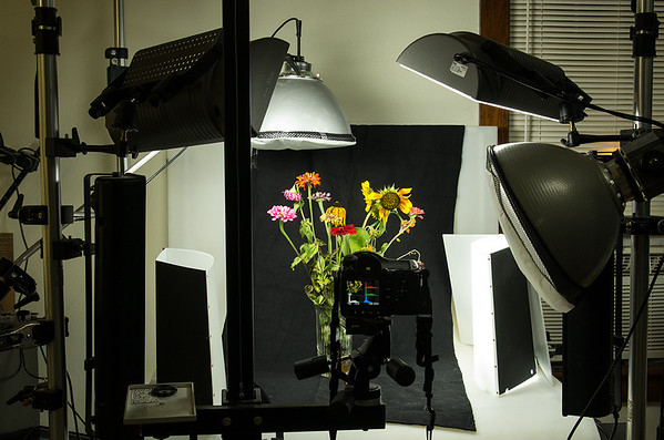 Lighting Still Lifes